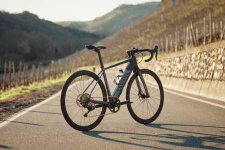 Canyon Endurace:On