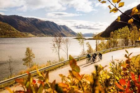 FJORD OG FJELL: Det kan se slik ut, men Totak er en innsjø, midt i Sør-Norge. Men omgivelsene kan vi like.