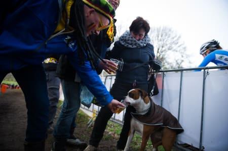 ØLHUND: Både donører, hund og eier satte mer pris på å få Fido full enn å se på rittet.