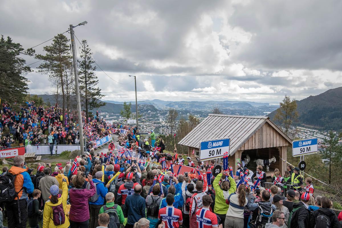 TOPPERS! Andreas Vangstad når geitehøyde ved Fløien Folkerestaurant. Foto: Kristof Ramon