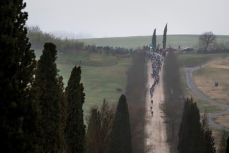 STRADE BIANCHE: Sykkelritt, grusveier, sypresser, vingårder, landskap, Toscana, amore. Foto: Kristof Ramon