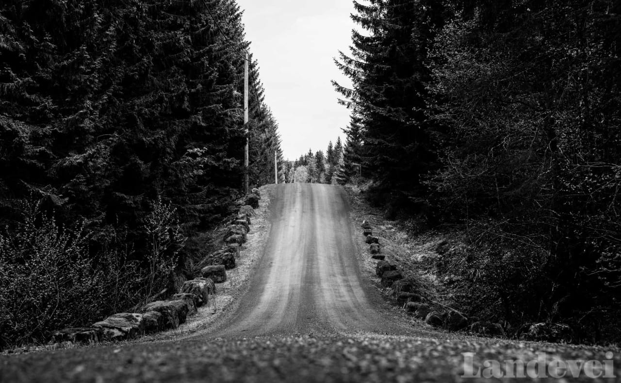 HOPPBAKKE: Den 18 kilometer lange veien fra Kleivstua til Lommedalen er en berg og dalbane av de helt sjeldne.