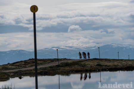 Til toppen av Blåhø