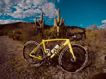 Under stjernene i Tucson
