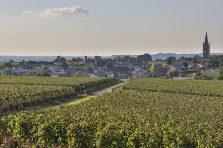 Gjennom drueåkrer som gir noen av verdens edleste viner, kan Touren avgjøres på nest siste dag.