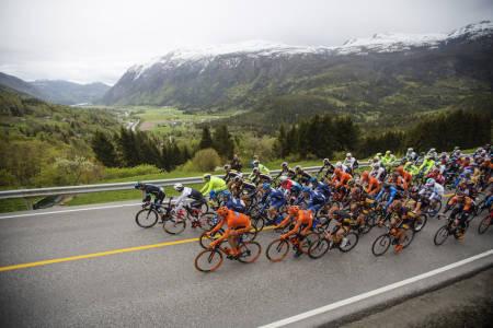 STORT FELT: Årets Tour of Norway holder seg unna fjellene, men riktig hardt vil det fortsatt bli. Foto: Kristoffer Øverli Andersen.