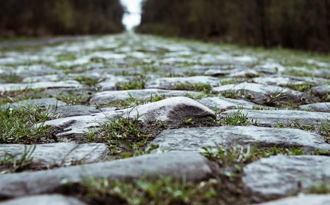 RISIKABELT: Sjansen er stor for både punkteringer og velt i Paris-Roubaix. Foto: Henrik Alpers