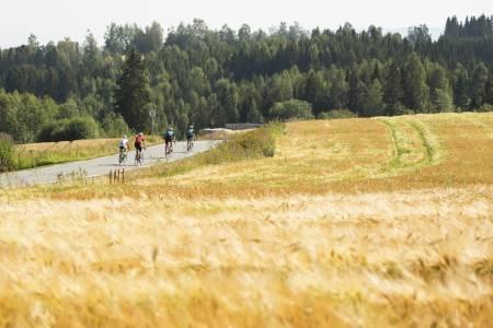 GULL ALT SOM GLIMRER: Brennvarm sol, tørr luft og bading i Mjøsa. Derfor er sykling på Toten gull. Foto: Tor Simen Ulstein