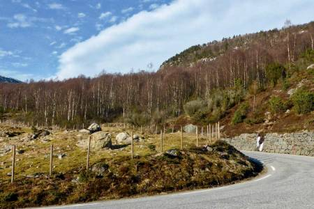motbakkesykling motbakke bakkesykling landevei cycling Norge 71 bakker du må sykle i Norge fri flyt procycling gruppetto strava segment Giljastølen Gjesdal