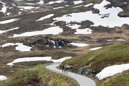 motbakkesykling motbakke bakkesykling landevei cycling Norge 71 bakker du må sykle i Norge fri flyt procycling gruppetto strava segment Sognefjellet Luster Sogn