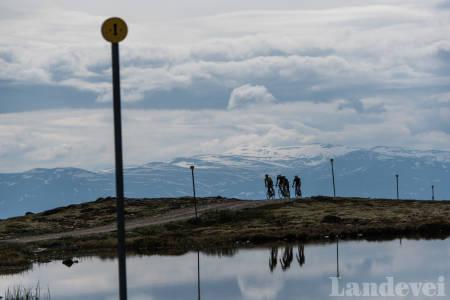 VEIVISER: Veien til Blåhø er pyntet med gule smileyprikker hele veien til topps. Foto: Henrik Alpers