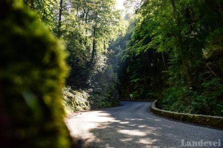 VÅTT: Klatringen og utforkjøringen til Col de Portet de Aspet er der Fabio Casartelli kjørte seg ihjel. Idyllen har glatt og våt asfalt.